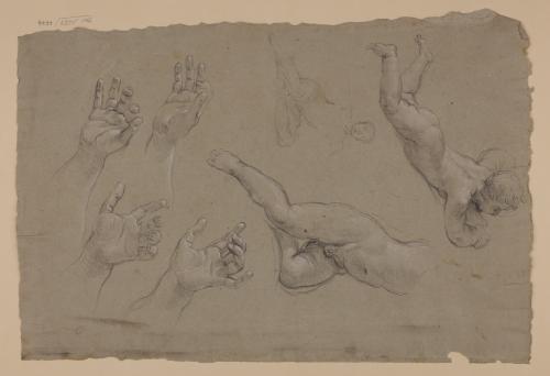 Estudio de desnudos infantiles y manos