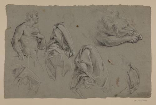 Estudios de torso masculino, ropajes sobre figuras y león (San Marcos)
