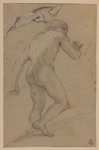 Estudio de desnudo varonil de espaldas y de paños