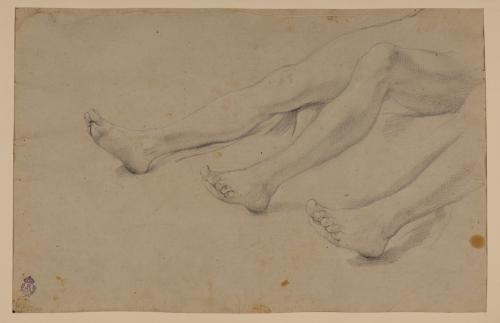 Estudio de piernas