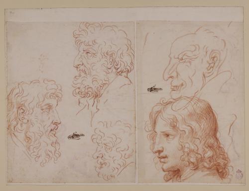 Cinco caricaturas masculinas, tres barbados, un prelado y un joven en dos hojas