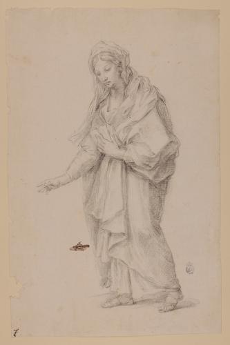 Estudio de figura femenina envuelta en un manto