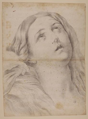 Estudio de la cabeza de Magdalena penitente de Guido Reni