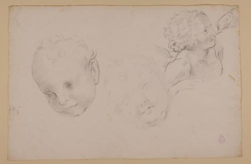 Estudio de cabezas infantiles