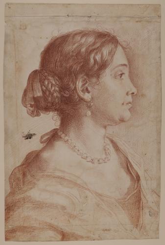 Retrato femenino de perfil (Francesca Gommi)