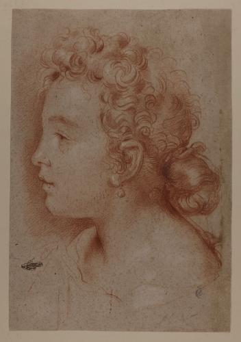 Retrato de perfil de Faustina Maratti hacia la izquierda