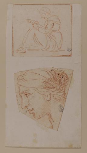 Estudio de figura leyendo y cabeza femenina