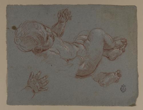 Estudio de cuerpo, mano y pie infantil
