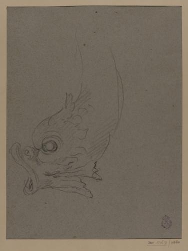 Estudio de pez o delfín decorativo