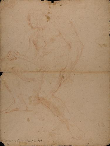 Apunte de modelo masculino desnudo sentado