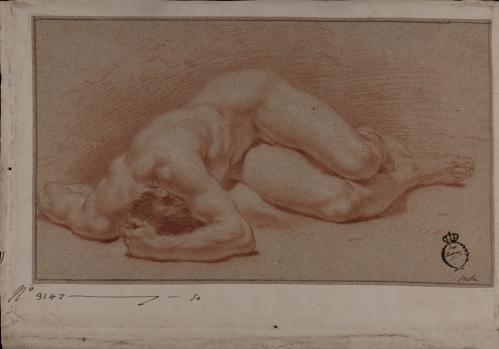 Estudio de modelo masculino desnudo tendido