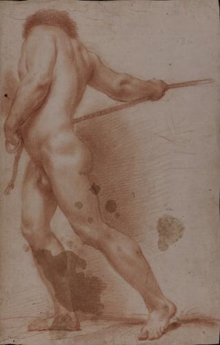 Estudio de modelo masculino desnudo en pie