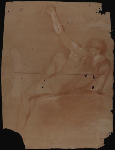 Estudio de modelo masculino desnudo sentado de espaldas