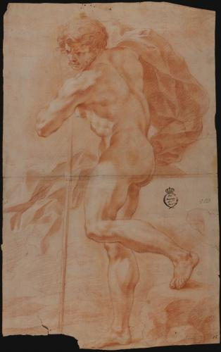 Estudio de modelo masculino desnudo de pie