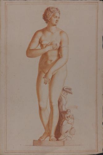 Estudio de la Venus Medici o del Delfín