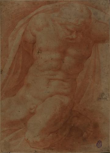 Estudio de modelo masculino desnudo arrodillado