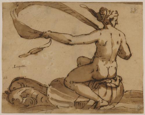 Estudio de Afrodita o Anfítrite