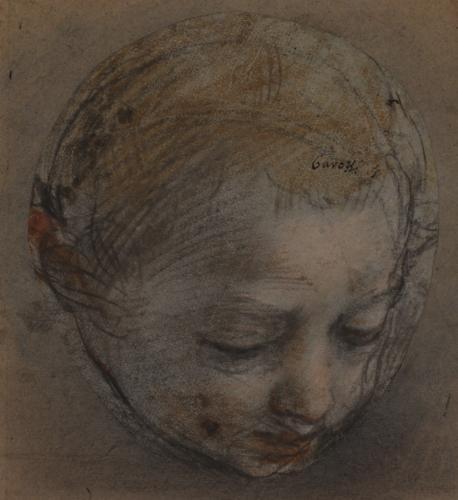 Estudio de cabeza de niño