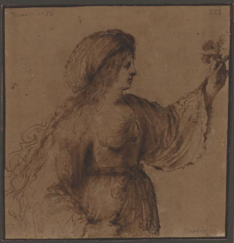 Estudio de mujer con turbante y una flor
