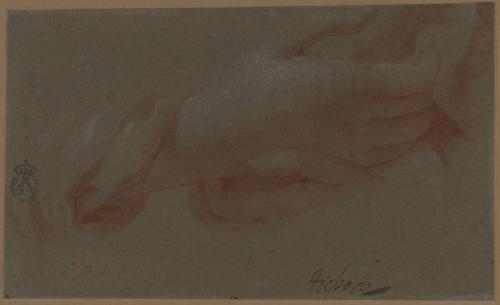 Estudios de manos de la Virgen del Jilguero