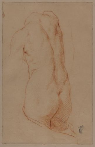 Estudio de un torso antiguo desnudo femenino de espaldas