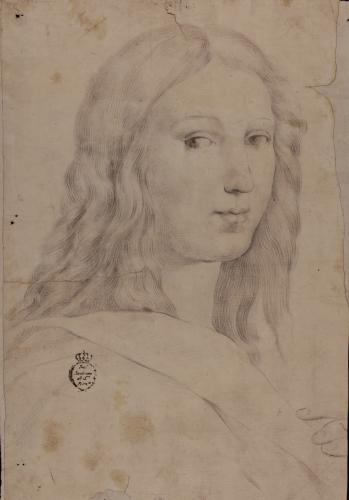 Estudio de la cabeza de Francesco Maria della Rovere de la Escuela de Atenas de Rafael
