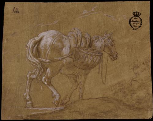 Estudio de mula con alforjas y montura