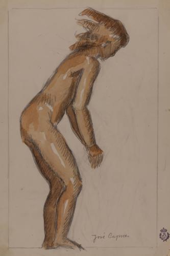 Estudio de desnudo femenino semiagachado de perfil