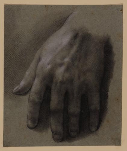 Estudio de mano