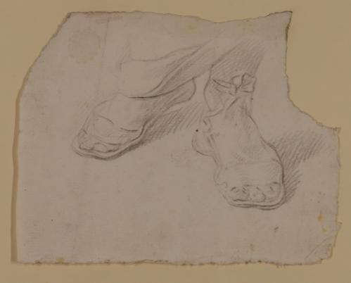 Estudios de pies