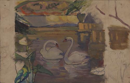Estudio de cisnes en un estanque
