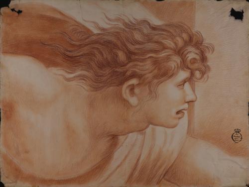 Estudio de la cabeza de un ángel