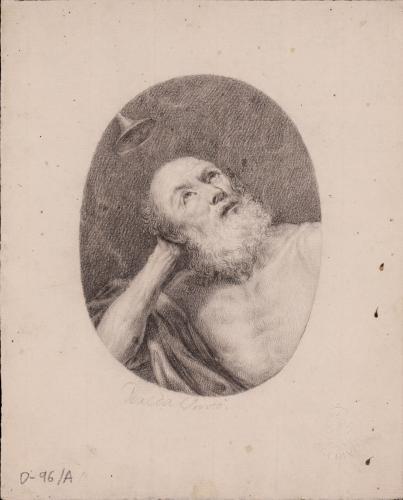 San Jerónimo, Doctor