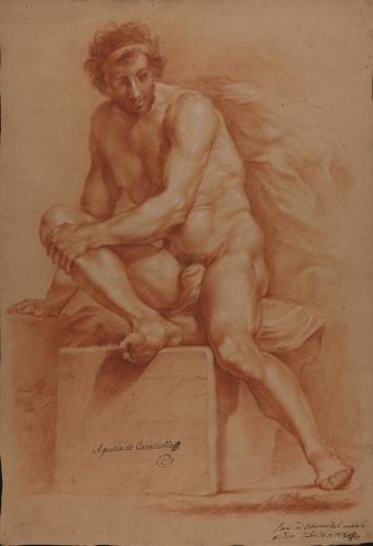 Estudio de modelo masculino desnudo sentado sobre pedestal