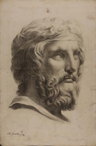 Estudio del busto del Dionisios Farnese