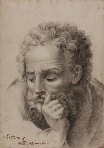 Estudio de cabeza masculina mesándose la barba con la mano derecha