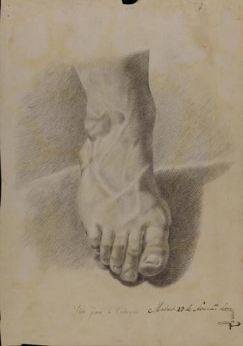 Estudio de pie