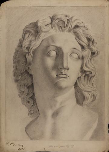 Estudio del busto de Alejandro Magno