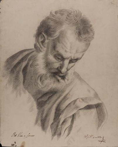 Estudio de cabeza de anciano barbado