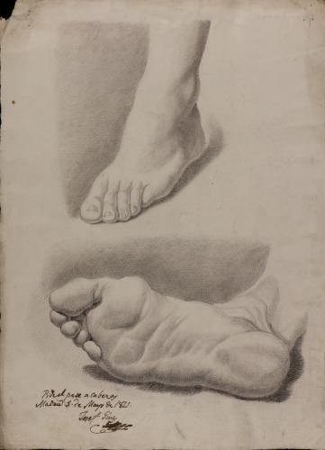 Estudio de pie izquierdo terciado y de la planta de pie derecho