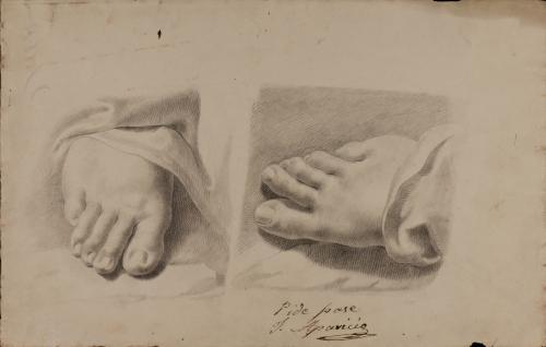Estudio de pie frontal y cenital