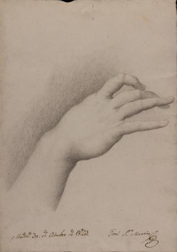 Estudio de mano derecha femenina