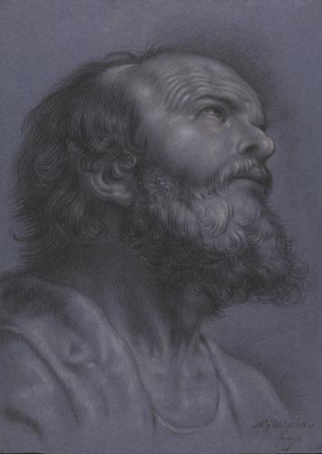 Estudio de cabeza masculina barbada de tres cuartos mirando hacia arriba