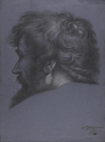 Estudio de cabeza masculina de espaldas