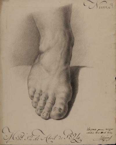 Estudio frontal del pie derecho