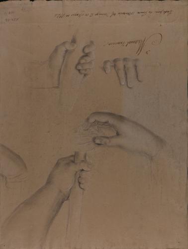 Estudios de manos en diferentes posturas