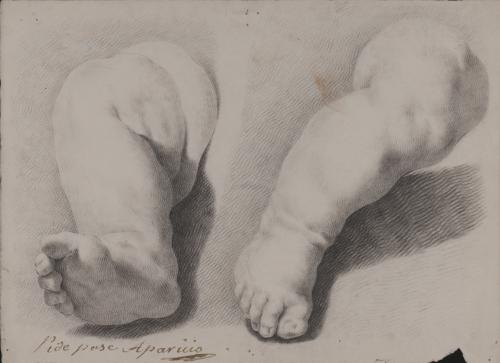 Estudio de pierna infantil en dos posturas