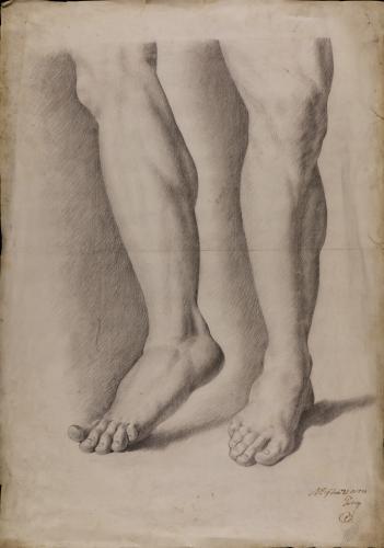 Estudio de la pierna izquierda y derecha del Fauno del Cabrito