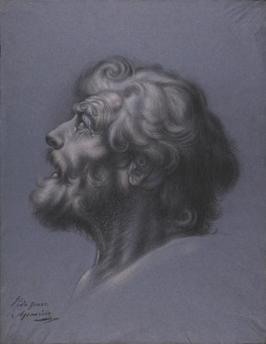 Estudio de cabeza masculina barbada de perfil hacia la izquierda