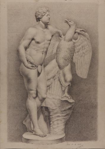 Estudio de la escultura de Ganímedes con el Águila-Zeus